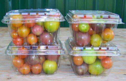 hộp đựng trái cây tổng hợp